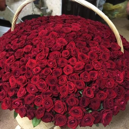 Купить на заказ 1001 роза с доставкой в Сарани