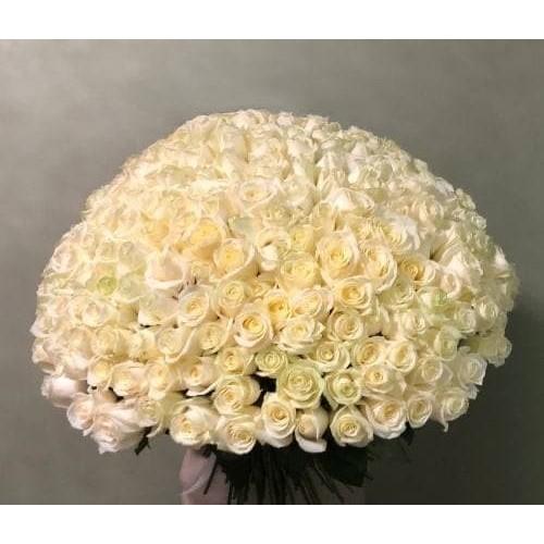 Купить на заказ 201 роза с доставкой в Сарани