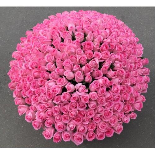 Купить на заказ 501  роза с доставкой в Сарани