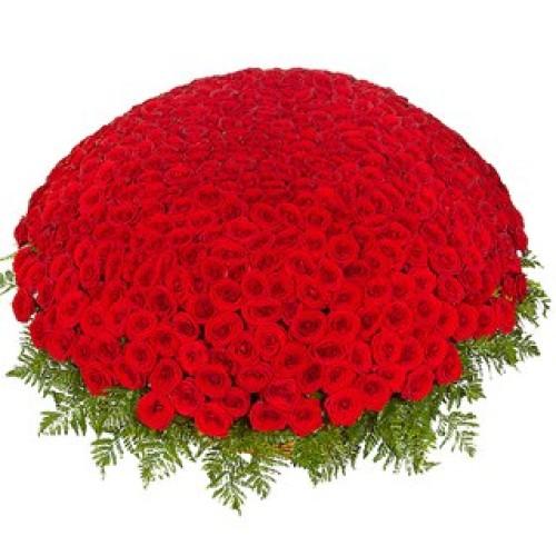 Купить на заказ 301  роза с доставкой в Сарани